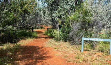 Start of Little Mountain walking track with park signage. Photo credit: Leah Pippos © DPIE