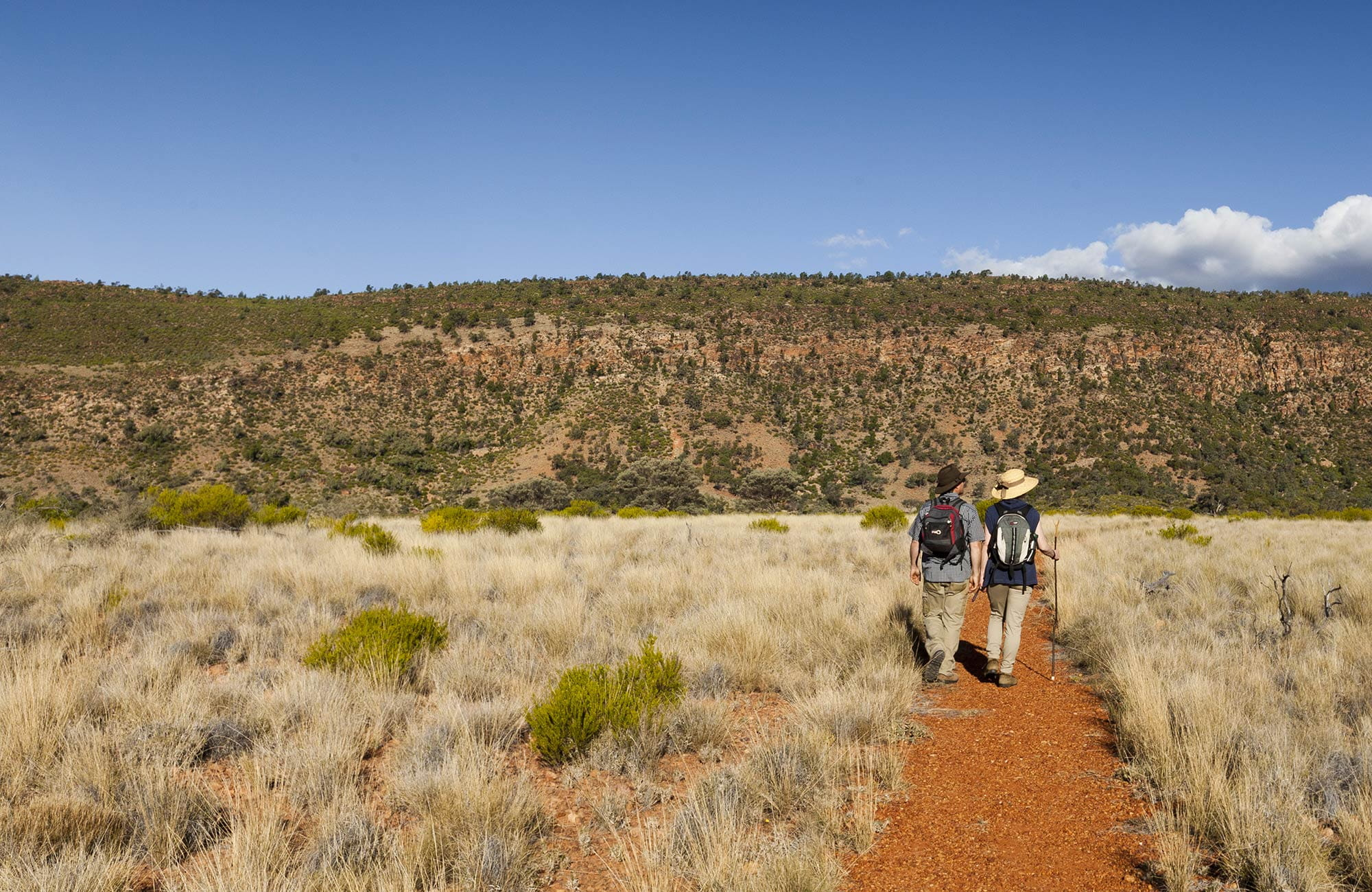 Valley of the Eagles walk, Gundabooka National Park. Photo: David Finnegan