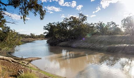 The Darling River at Yanda campground in Gundabooka State Conservation Area. Photo: Leah Pippos © DPIE