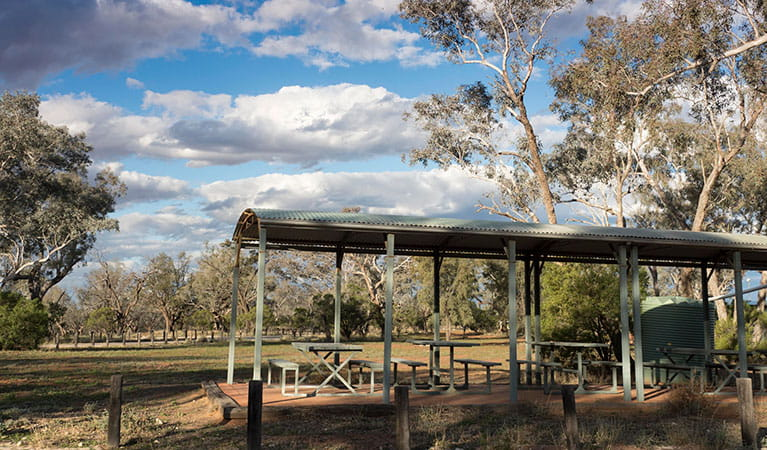 Yanda Campground, Gundabooka National Park. Photo: OEH