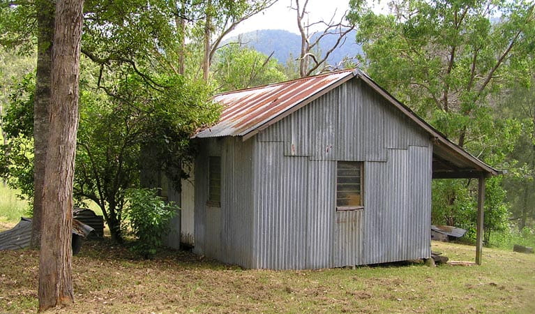 Adams Hut, Dalmorton Campground, Guy Fawkes River National Park. Photo: S Leathers/NSW Government