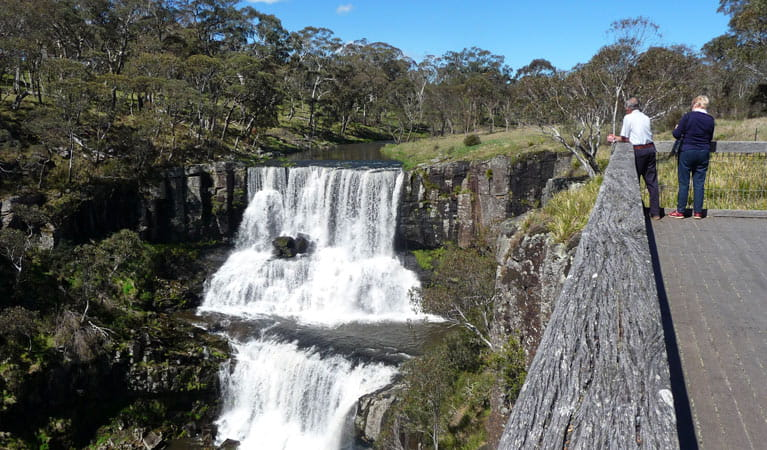 Ebor Falls Lookout, Guy Fawkes River National Park. Photo: Barbara Webster/NSW Government