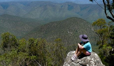 Misty Creek Lookout, Guy Fawkes River National Park. Photo: Barbara Webster/NSW Government