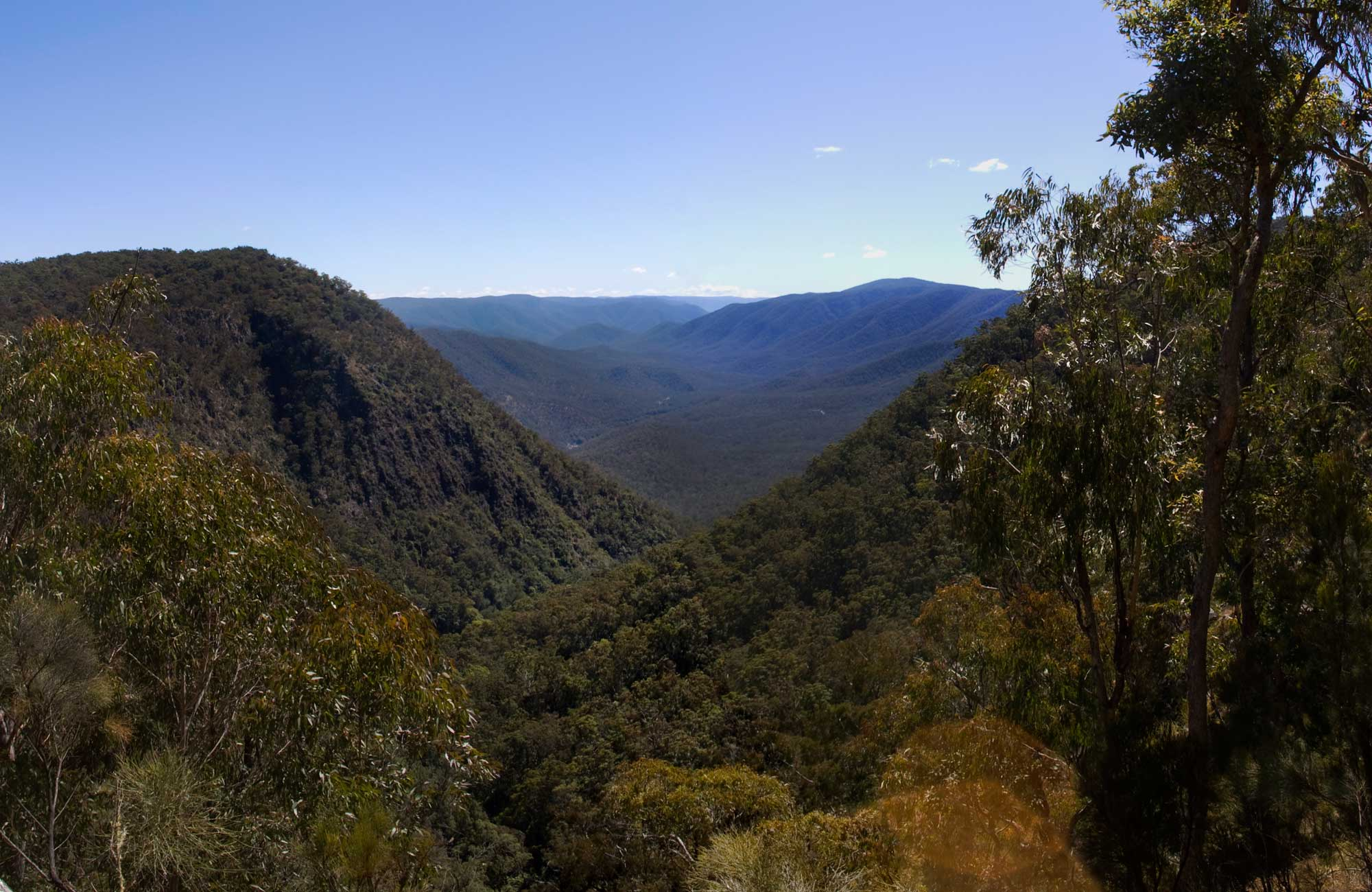 Escarpment Walk, Guy Fawkes River National Park. Photo: NSW Government