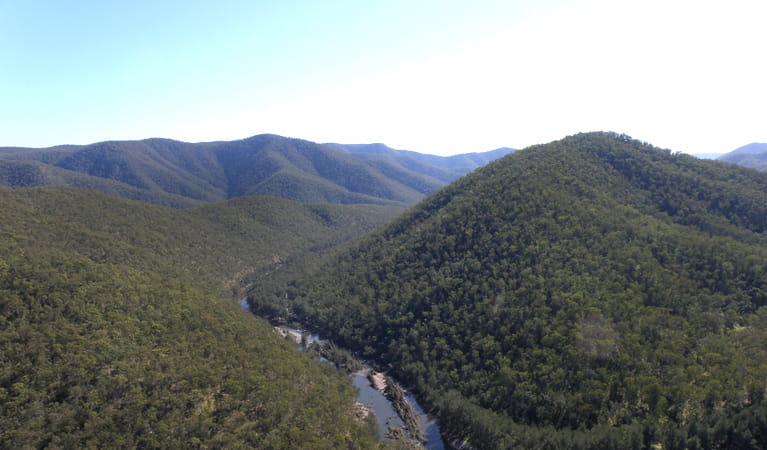 Guy Fawkes River, Guy Fawkes River National Park. Photo: S Leathers/NSW Government