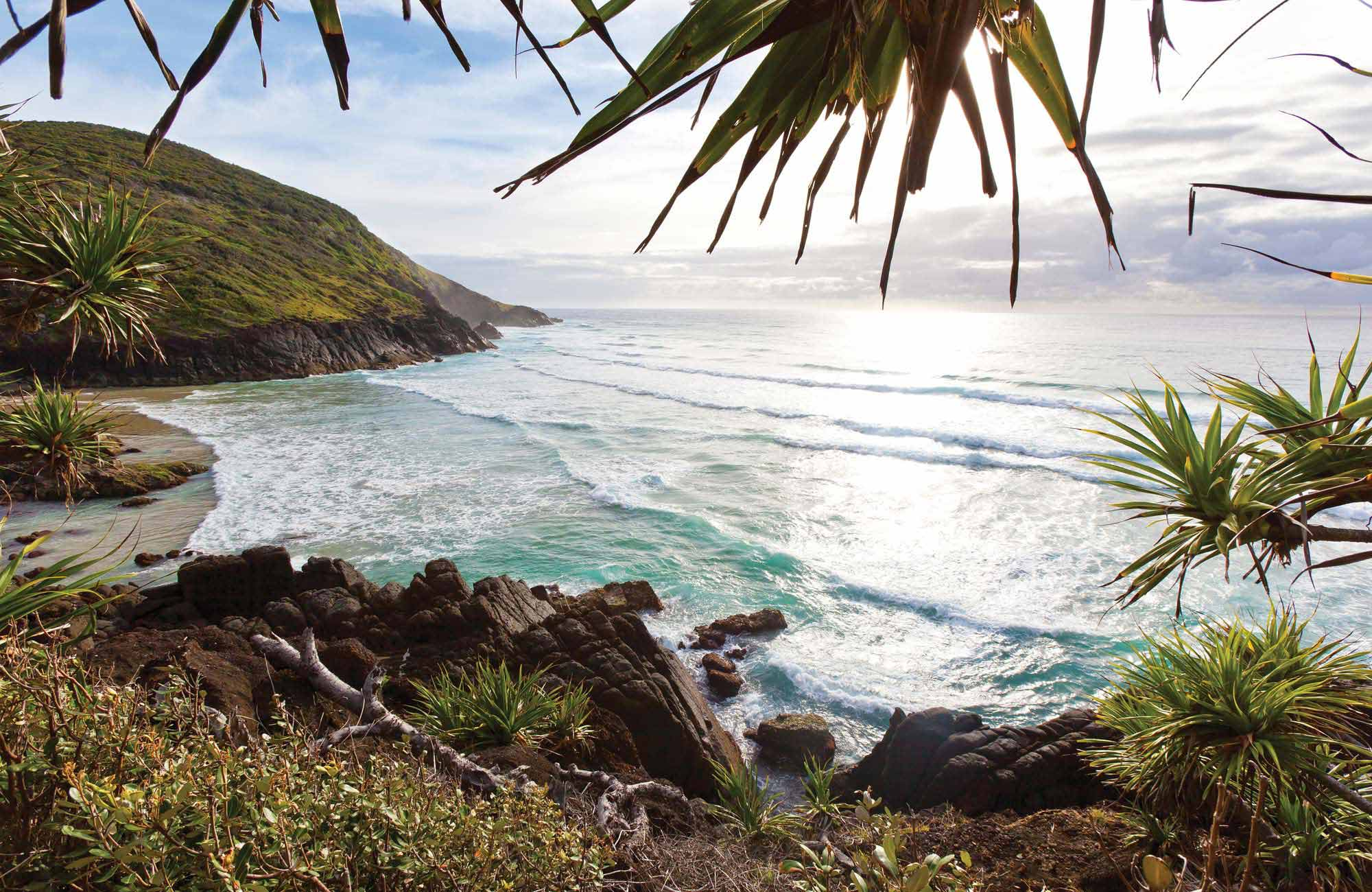 View of beach in Hat Head National Park. Photo: Rob Cleary