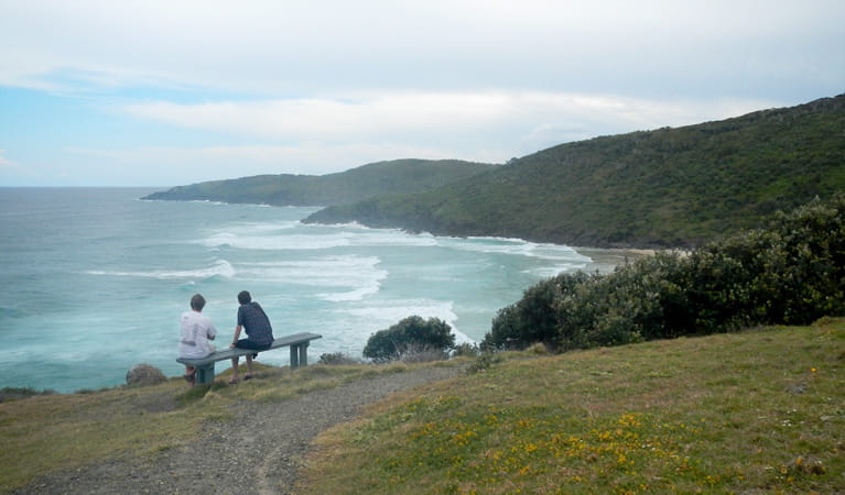 Connors Beach walking track, Hat Head National Park. Photo: Debby McGerty/NSW Government