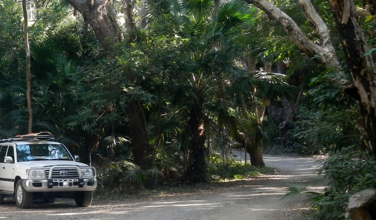 A car and camper trailer parked under trees at Smoky Cape campground in Hat Head National Park. Photo: © Debbie McGerty