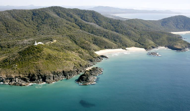 Smoky Cape Walking Track, Hat Head National Park. Photo: Stuart Poignard/NSW Government