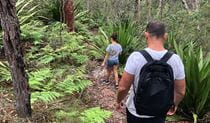 Family bushwalking on Mooray track near ferns and gymea lillies. Photo credit: Natasha Webb © DPIE