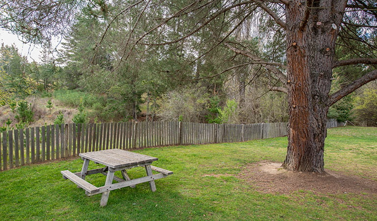 Bill Lyles Reserve picnic area, Hill End Historic Site. Photo: John Spencer