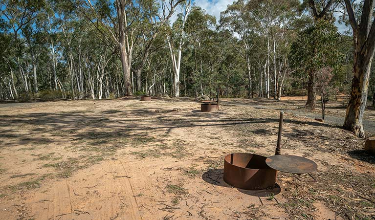 Metal fire rings surrounded by bushland at Glendora campground in Hill End Historic Site. Photo: John Spencer/OEH