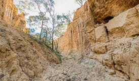 Golden Gully walking track, Hill End Historic Site. Photo: John Spencer