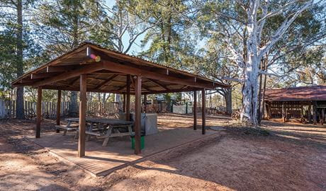 View of covered picnic shelter with picnic table and barbecue against a backdrop of trees and rustic shed.  Photo: John Spencer/DPIE
