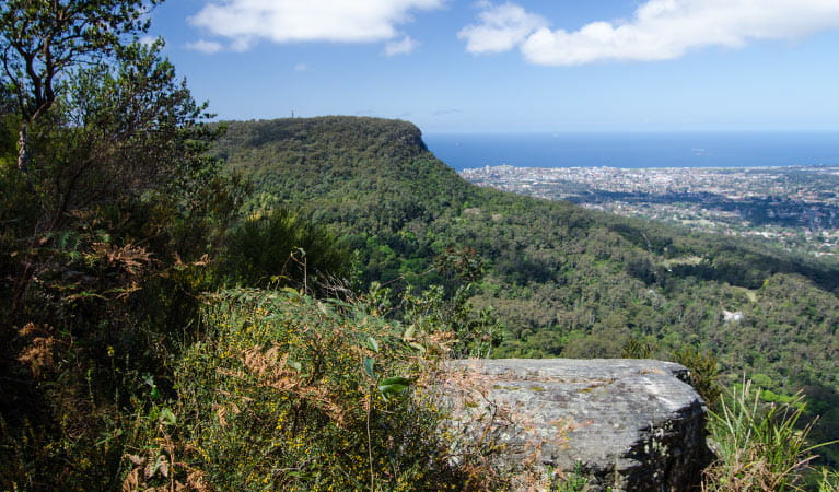 Escarpment view, Illawarra Escarpment State Conservation Area. Photo: John Spencer