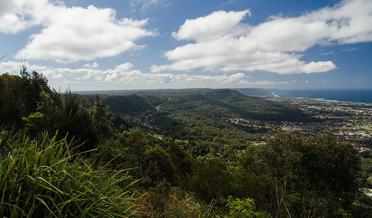 Escarpment, Illawarra Escarpment State Conservation Area. Photo: John Spencer