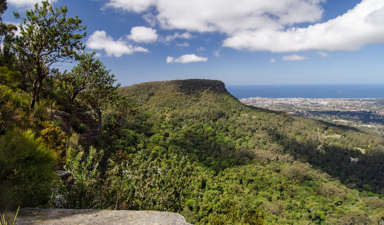 View, Illawarra Escarpment State Conservation Area. Photo: John Spencer