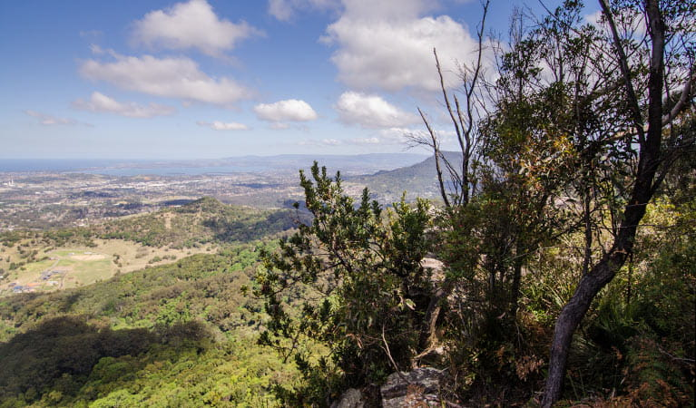 Cloud watching, Illawarra Escarpment State Conservation Area. Photo: John Spencer
