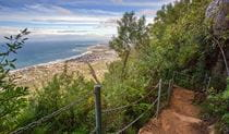 Sublime Point walking track, Illawarra Escarpment State Conservation Area. Photo: Nick Cubbin