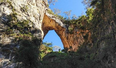 Looking up at Carlotta Arch from below, Jenolan Karst Conservation Reserve. Photo: Jenolan Caves Trust/DPIE