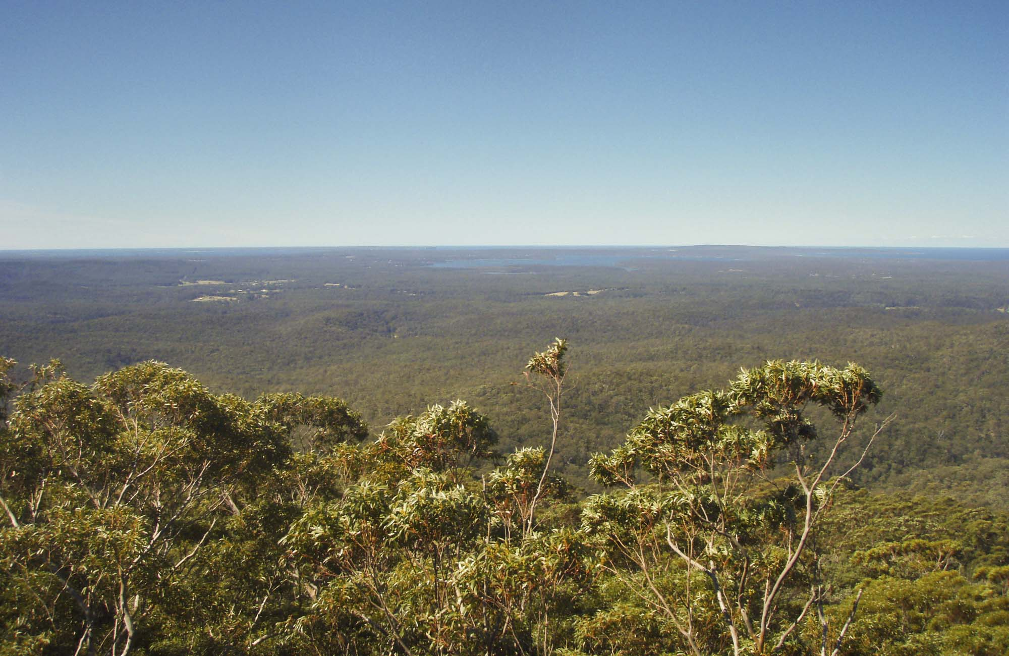Jerrawangala Lookout, Jerrawangala National Park. Photo: R Phelps/NSW Government