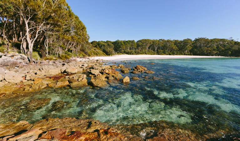 Rocks on the coastline at Greenfield Beach, Jervis Bay National Park. Photo: David Finnegan © DPIE