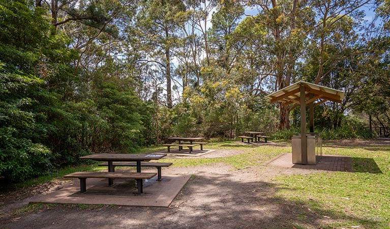 Barbecue facilities and picnic tables at Greenfield Beach, Jervis Bay National Park. Photo credit: John Spencer © DPIE