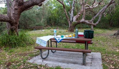 Food containers on a picnic table, Red Point picnic area, Jervis Bay National Park. Photo: Michael Van Ewijk © DPIE
