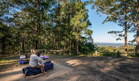 Jilliby State Conservation Area. Photo: John Spencer