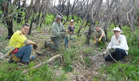 Botany Bay busy bee volunteers. Photo: Ben Khan OEH