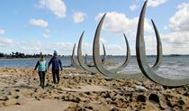Family walking near whale bones sculptures on foreshore of Burrawang walk. Photo credit: Natasha Webb © Natasha Webb