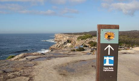 Park sign pointing to Cape Baily lighthouse, set against a vista of ocean, rugged rocky coastline and bushland.  Photo: Natasha Webb/DPIE