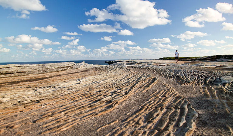 A man walking over the rocks at the Cape Solander lookout area, in the Kurnell area of Kamay Botany Bay National Park. Photo: © Andrew Richards