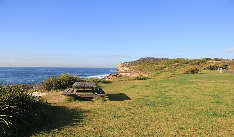 Grassy picnic area with picnic table, and ocean and cliffs in the background. Photo: Natasha Webb/OEH