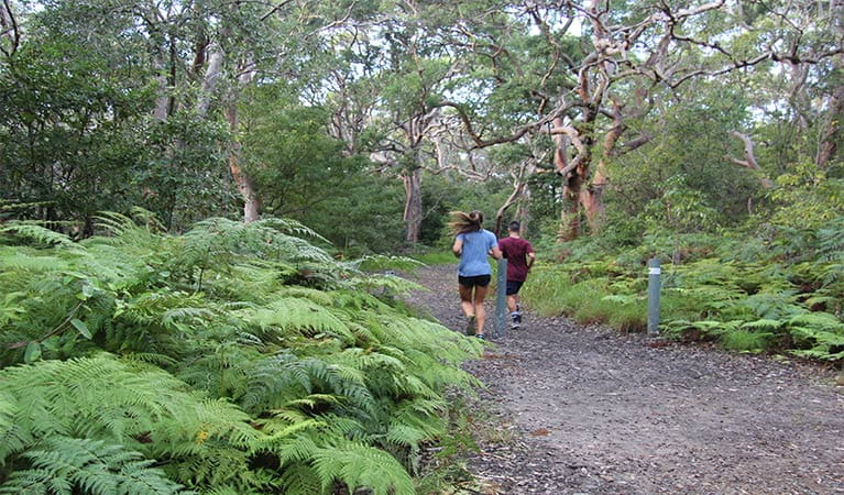 A man and women run along a wide trail toward woodland. Photo: Natasha Webb/OEH