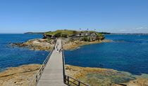 Boardwalk to Bare Island Fort, La Perouse, Kamay Botany Bay National Park. Photo: E Sheargold/OEH.