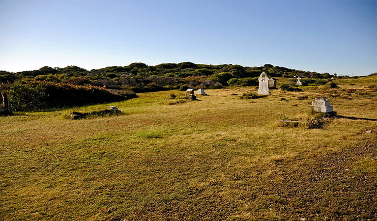 Historic gravestones rest on a grassy plain alongside coastal bushland. Photo: Kevin McGrath/OEH.