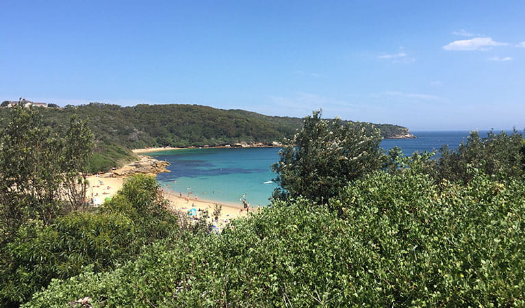 Views of Little Congwong Beach from Henry Head walking track. Photo: Natasha Webb/OEH