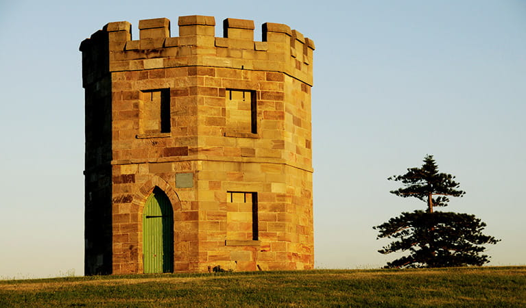 Octagonal stone watchtower with parapet, set on a grass lawn with pine tree. Photo: Kevin McGrath/DPIE