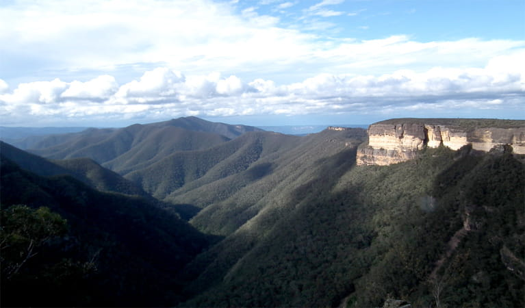 Kanangra-Boyd Lookout, Kanangra-Boyd National Park. Photo: Jules Bros/NSW Government