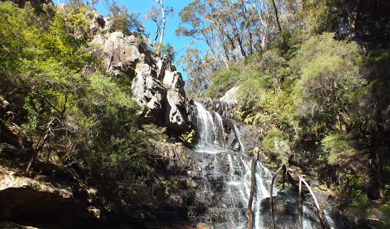 Waterfall Walk, Kanangra-Boyd National Park. Photo: M Jones/NSW Government