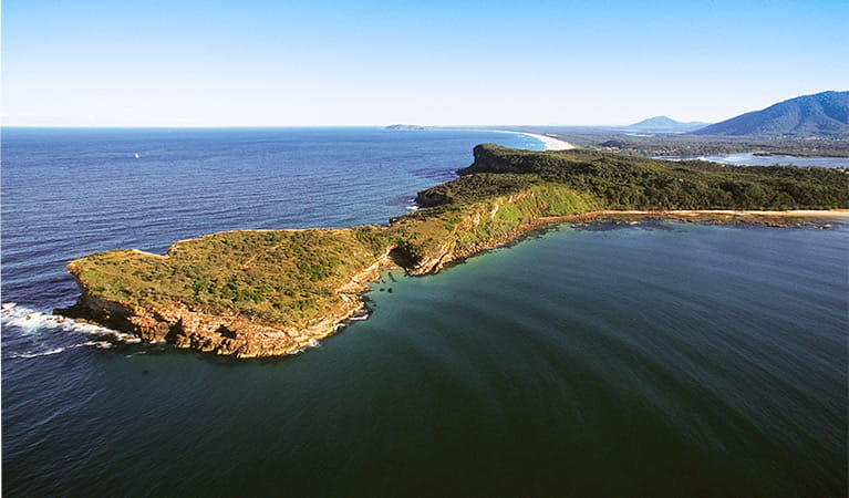 Kattang Nature Reserve: Photo: NSW Government