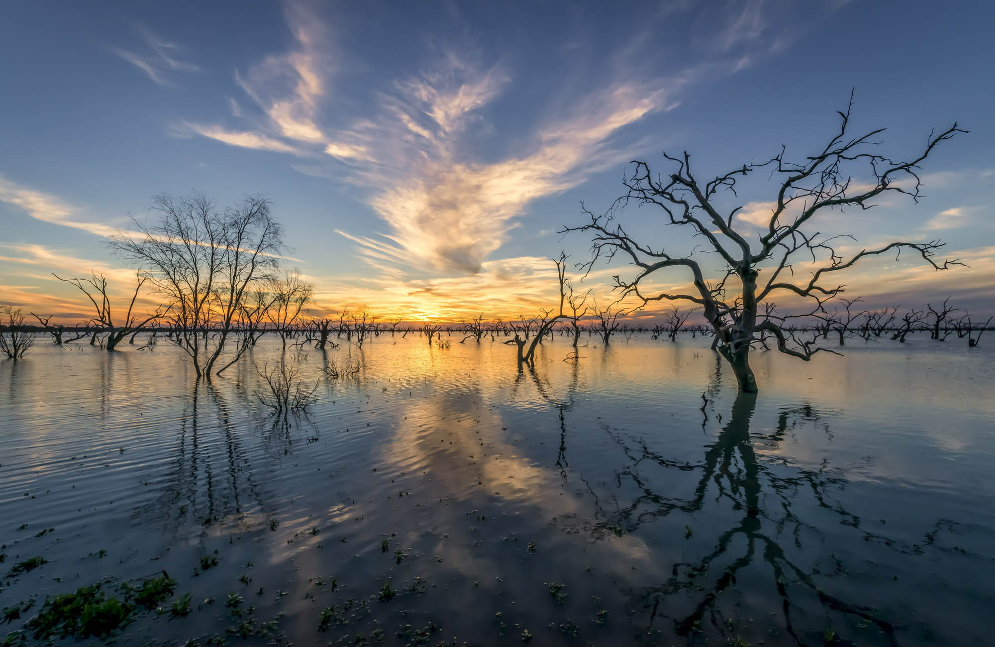 Lake Menindee, Kinchega National Park. Photo: John Spencer