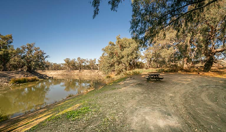 Darling River campground | NSW National Parks