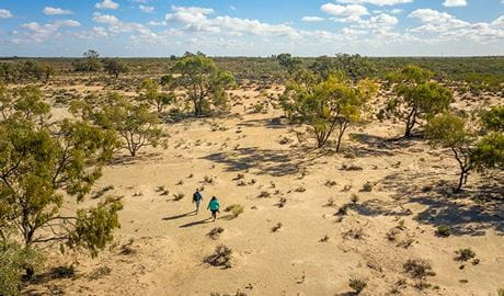 Aerial view of open sand plains on the Kinchega Homestead billabong walk. Photo: John Spencer/DPIE