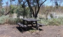 Picnic table, Morton Boulka picnic area. Photo: David Finnegan