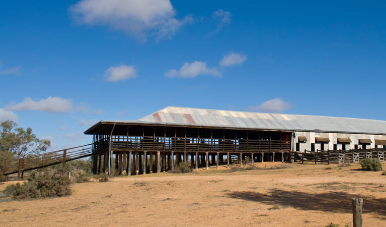 Historic Kinchega Woolshed, Kinchega National Park. Photo: David Finnegan