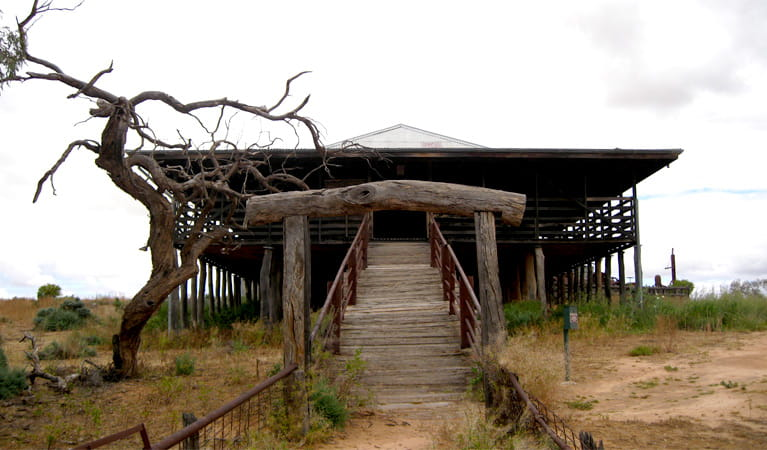 Steps up to the Historic Kinchega Woolshed, Kinchega National Park. Photo: Dina Bullivant