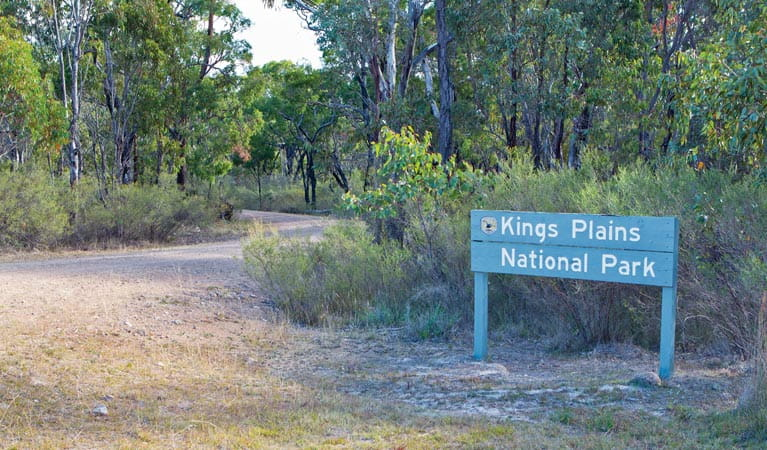 Kings Plains National Park. Photo: Rob Cleary