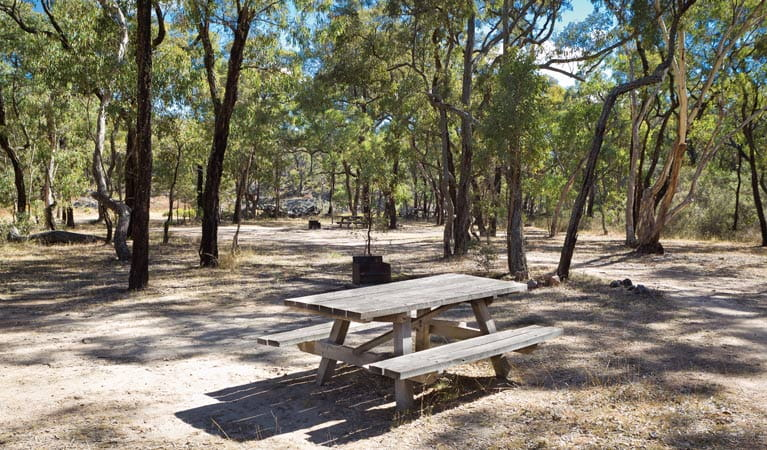 Ironbark Creek camping area, Kings Plains National Park. Photo: Rob Cleary